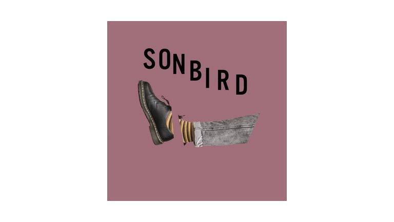 Sonbird – Głodny [RECENZJA]